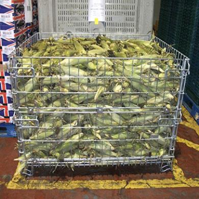 Conteneur fil pour stockage de denrées alimentaires